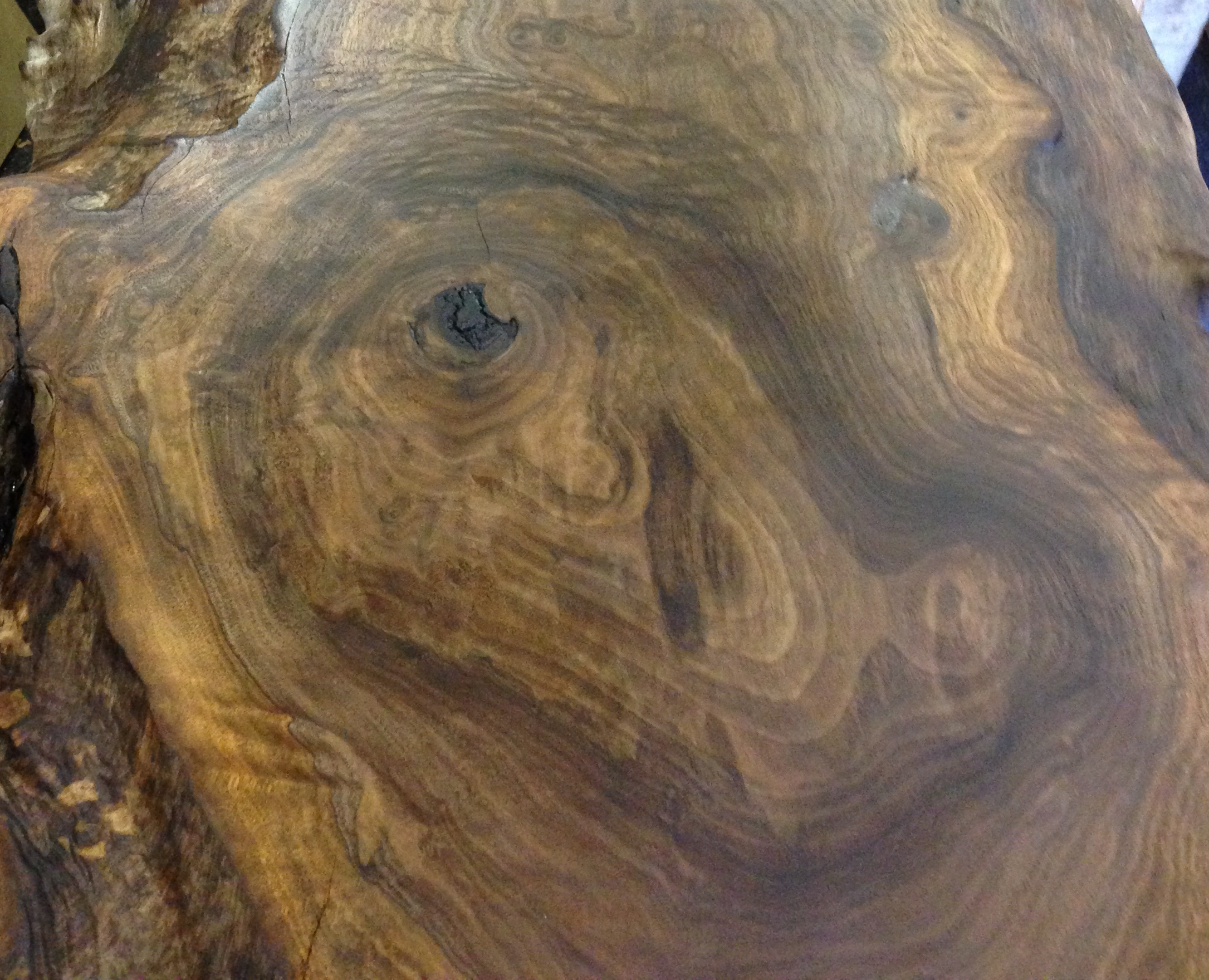 California Claro live edge walnut slabs